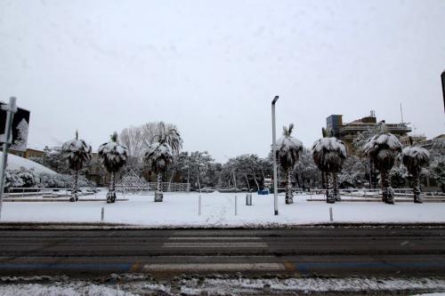 Nevicata Porto San Giorgio - febbraio 2018 (15)