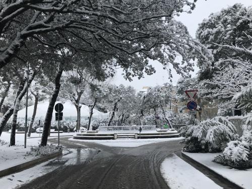 Nevicata Porto San Giorgio - febbraio 2018 (22)