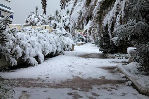 Nevicata Porto San Giorgio - febbraio 2018 (8)